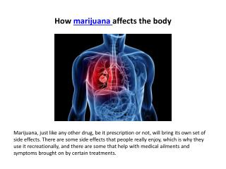 How marijuana affects the body