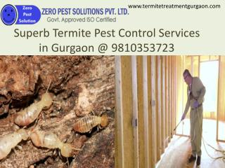 Superb Termite Pest Control Services in Gurgaon @ 9810353723