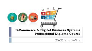 Digital Business Systems Professional Diploma Course