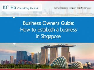 Guide to Establish and Register Your Business in Singapore