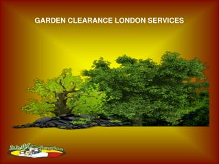Garden Clearance London Services