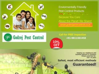 Get 10% off on pest control Faridabad