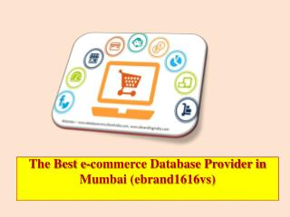 The Best e-commerce Database Provider in Mumbai (ebrand1616vs)