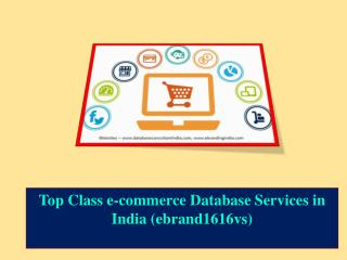 Top Class e-commerce Database Services in India (ebrand1616vs)