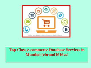 Top Class e-commerce Database Services in Mumbai (ebrand1616vs)