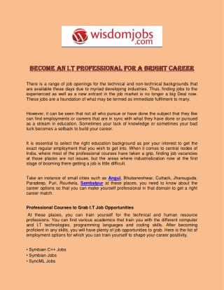 Become an I.T Professional for a Bright Career