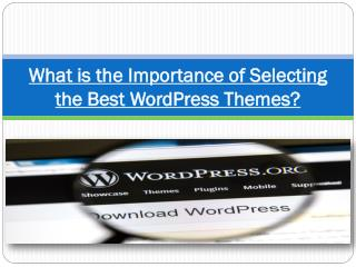 What is the Importance of Selecting the Best WordPress Themes