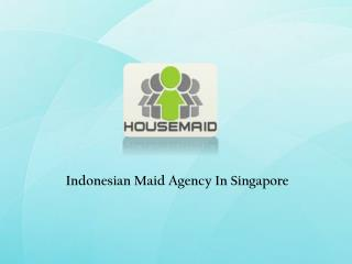 Indonesian Maids Singapore