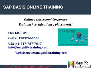 SAP BASIS ONLINE TRAINING IN USA|UK|CANADA
