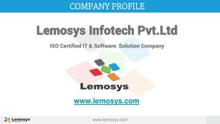 Lemosys Infotech Company Profile with our services