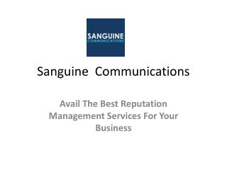 Avail The Best Reputation Management Services For Your Business
