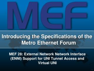 MEF 28: External Network Network Interface ENNI Support for UNI Tunnel Access and Virtual UNI