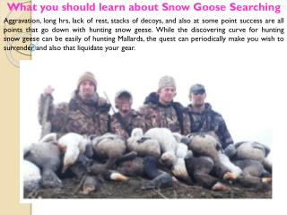 What you should learn about Snow Goose Searching