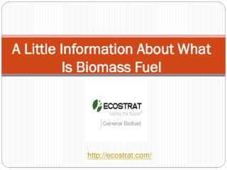 A Little Information About What Is Biomass Fuel