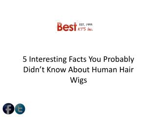 5 Interesting Facts You Probably Didn't Know About Human Hair Wigs