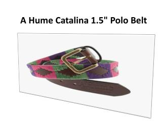A Hume Catalina 1.5 Polo Belt