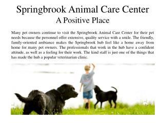 Springbrook Animal Care Center A Positive Place