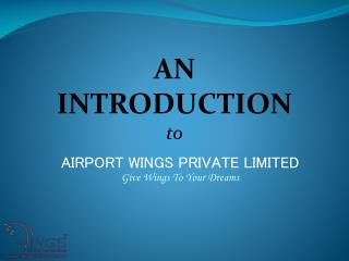 Introduction To Airport Wings