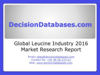 International Leucine Industry: Market research, Company Assessment and Industry Analysis 2016