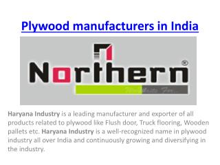 Plywood manufacturers in India