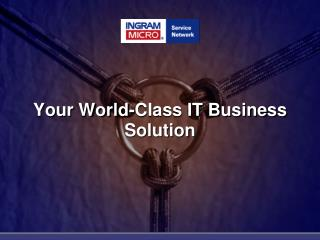 Your World-Class IT Business Solution