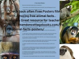 free animal facts posters