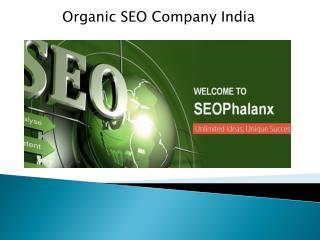 Organic SEO Company India