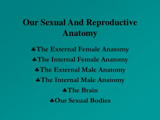 Our Sexual And Reproductive Anatomy