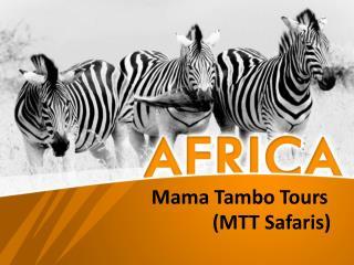 African Wildlife Safaris and Tours | MTT Safaris