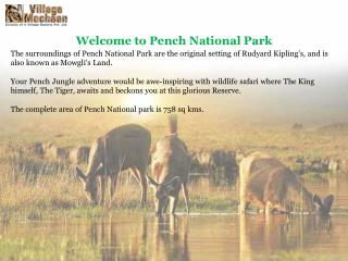Resorts in pench, Hotels in Pench