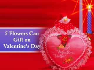 5 Flowers Can Gift on Valentine's Day