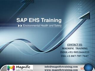 SAP EHS ONLINE TRAINING IN USA|UK|CANADA