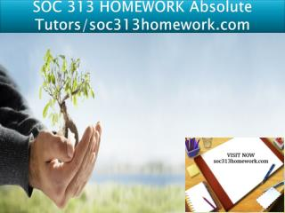 SOC 313 HOMEWORK Absolute Tutors/soc313homework.com