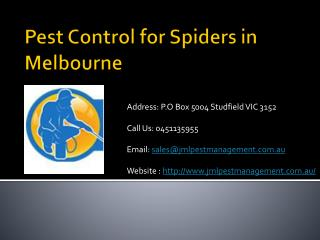 Pest control for spiders in Melbourne