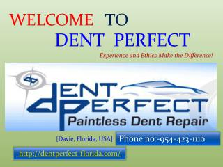 Dent Perfect