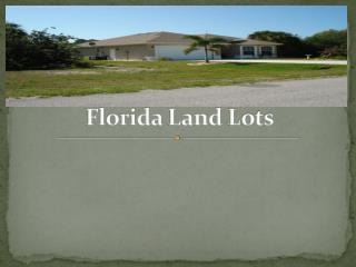 Florida land lots