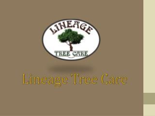 Lineagetreecare.com