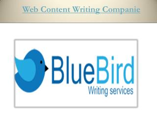 Web Content Writing Companies