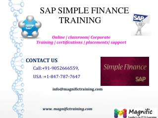 SAP SIMPLE FINANCE ONLINE TRAINING IN AUSTRALIA|SOUTH AFRICA|DUBAI