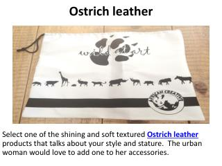 Ostrich leather, South african gifts, Tribal mask