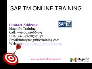 SAP TM ONLINE TRAINING IN USA|UK