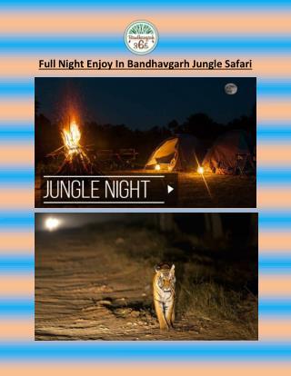 Full Night Enjoy In Bandhavgarh Jungle Safari