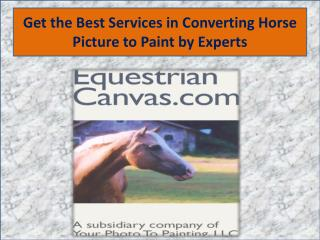 Get the Best Services in Converting Horse Picture to Paint by Experts