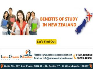 benefits of study in new zealand