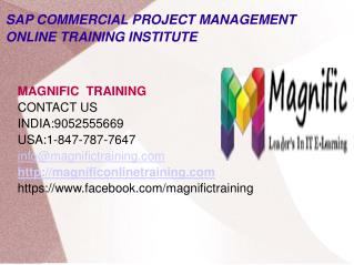 Sap commercial project management online training in usa
