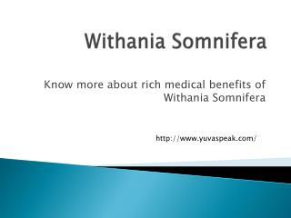 Withania Somnifera Medical Benefits of Withania Somnifera
