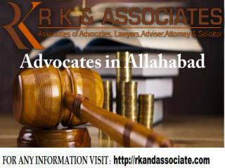 advocates in allahabad high court