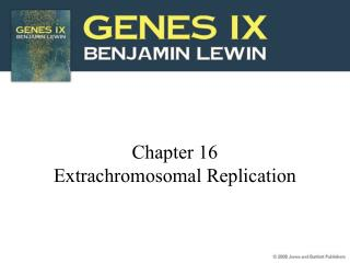 Chapter 16 Extrachromosomal Replication