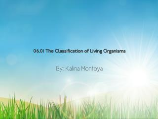 06.01 The Classification Of Living Organisms