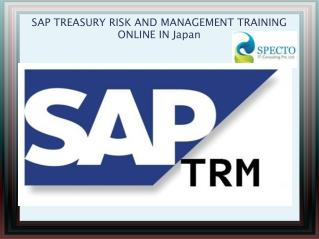SAP TREASURY RISK AND MANAGEMENT TRAINING ONLINE IN UK